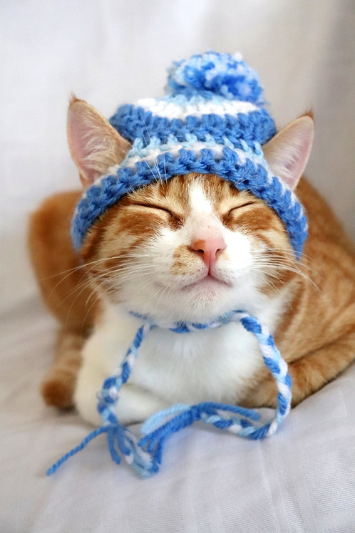 Striped Beanie Hats for Cats