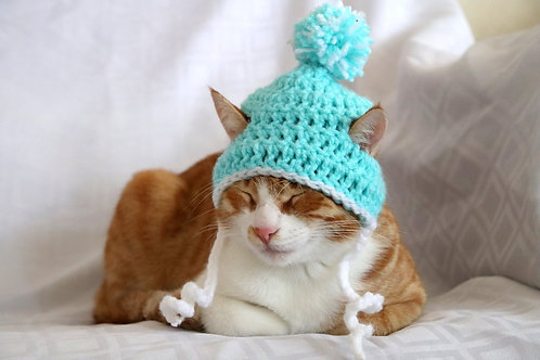 Winter Beanie Hats for Cats