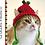 Thumbnail: Apple Cat Hat Crochet Patteren