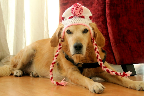 Valentine's Day Heart Hat for Large Dogs