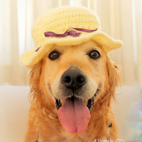Summer Sun Hat / Preekness Hat for Dogs