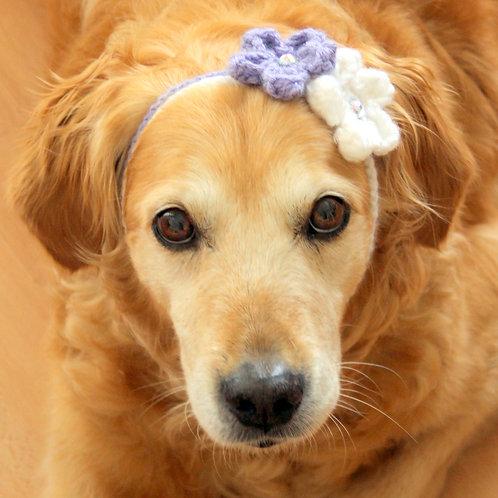 Flower Headband for Medium to Large Dog Breeds