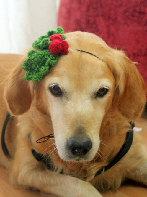 Holly Berry Christmas Headband for Dogs