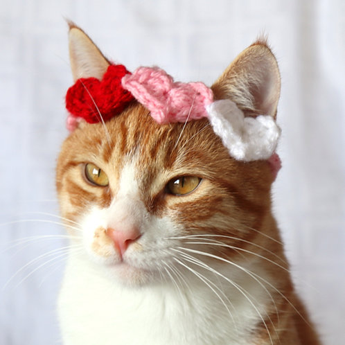 Valentines Day Cat Headband