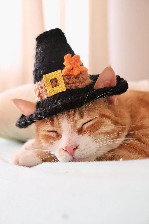 Pilgrim Hat for Cats