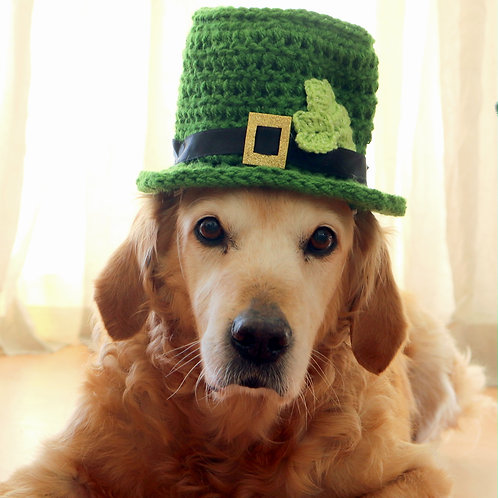 Leprechaun Hat for Dogs