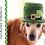 Thumbnail: Leprechaun Dog Hat Crochet Pattern