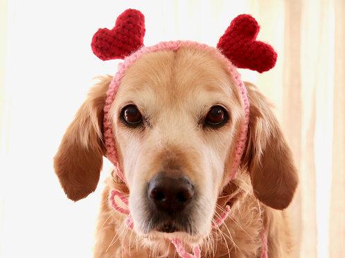 Heart Headband for Dogs
