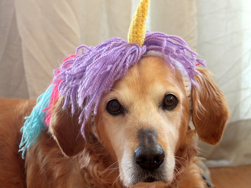 Unicorn Hat for Dogs