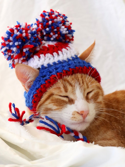 4th of July Pom Pom Hat for Cats