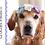 Thumbnail: Dog Flower Headband Crochet Pattern