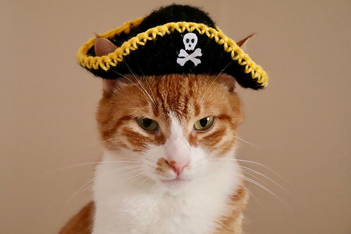 Pirate Hat for Cats