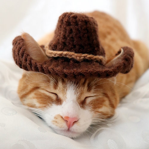Cowboy Hat for Cats