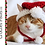 Thumbnail: Santa Cat Hat Crochet Pattern