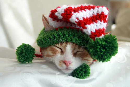 Elf Hat for Cats