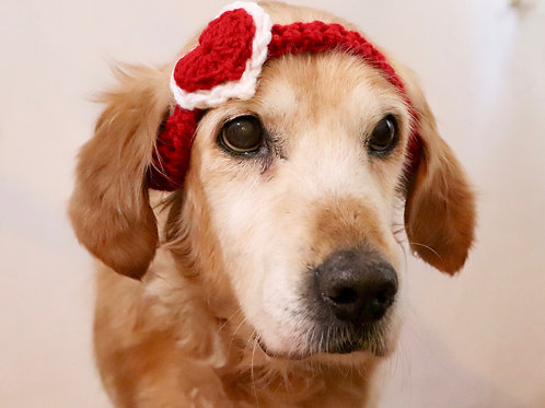 Red Valentines Day Heart Headband for Dogs