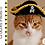 Thumbnail: Pirate Hat for Cats - Crochet Pattern