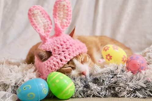 Pink Easter Rabbit Ears for Cats