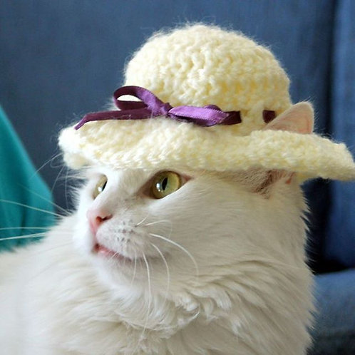 Summer Sun Hat for Cats