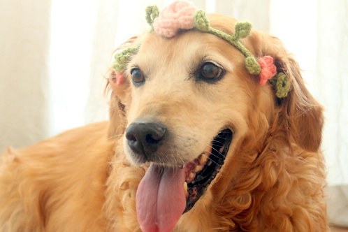 Pink Flower Crown / Collar for Dogs