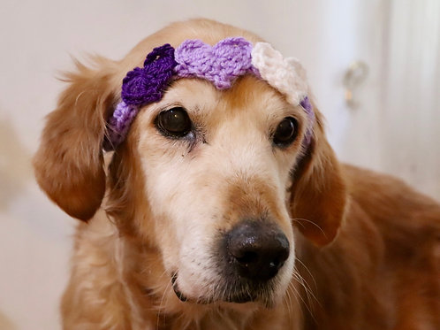 Purple Valentines Day Heart Headband for Dogs