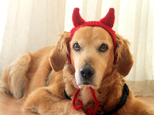 Devil Horns for Dogs