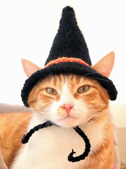 Witch Hat for Cats