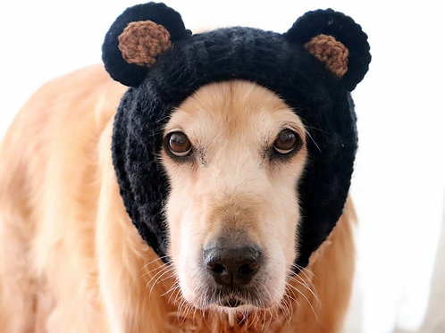 Bear Snood / Costume for Dogs
