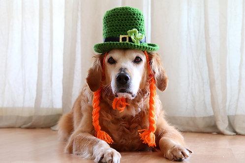 Girl Dog Leprechaun Hat with Braids