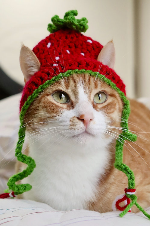 Strawberry Hats for Cats