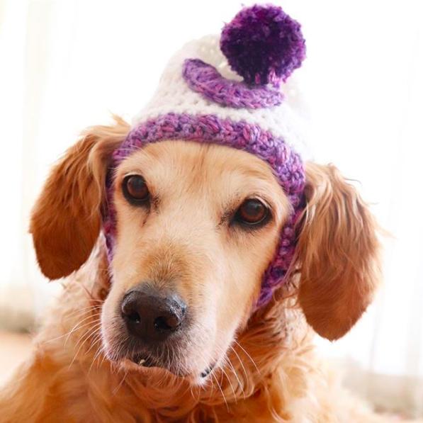 White/Purple Heart Hat