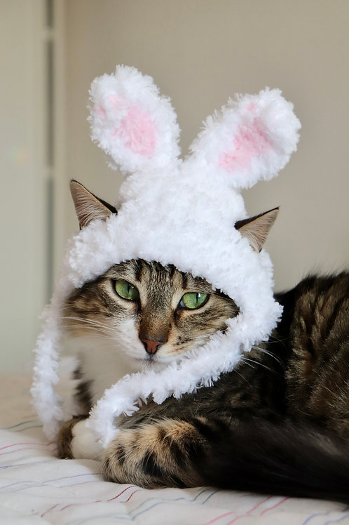 Fluffy Easter Bunny Ears for Cats