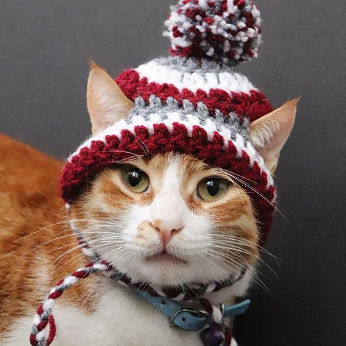 Burgundy & Gray Striped Beanie Hats for Cats
