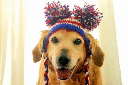 4th of July Pom Pom Hat for Dogs