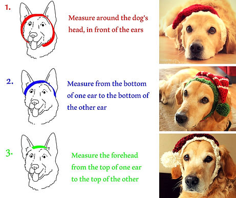 How to measure your dog's head for Aegean Drawns Dog Hats