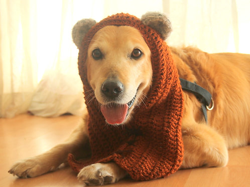 Hood with Ears for Dogs (Ewok Inspired)