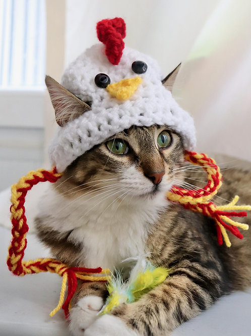 Chicken Hat for Cats