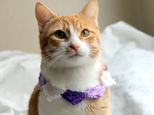 Purple Heart Necklace for Cats