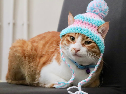 Pink and Aqua Striped Beanie Hats for Cats
