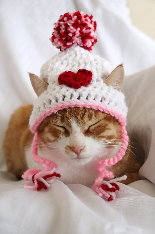 Valentines Day Heart Hat for Cats