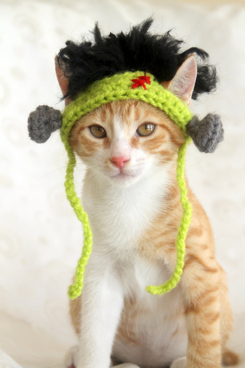 Frankenstein Hat for Cats