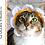 Thumbnail: Crochet Pattern: Cat Flower Headband