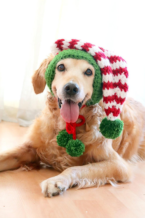 Elf Hat for Large Dogs