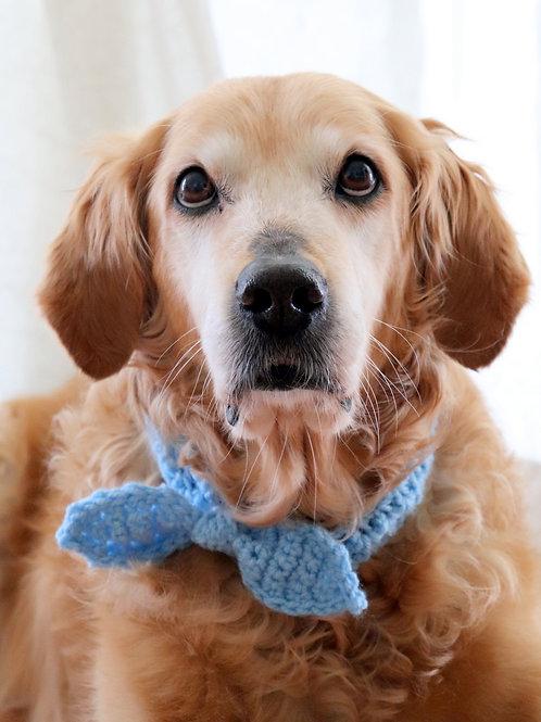 Bow Headband / Bandana for Dogs