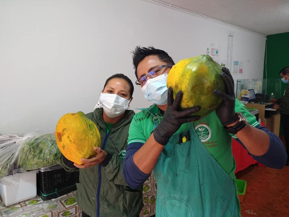 Les papayes de La Tulpa