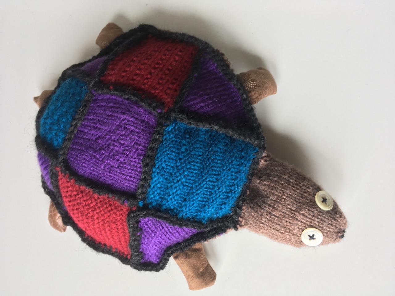 Rita, la tortue