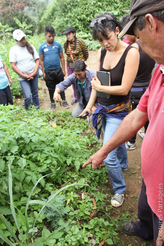 Cristina en visite dans une des fermes agrioécologiques