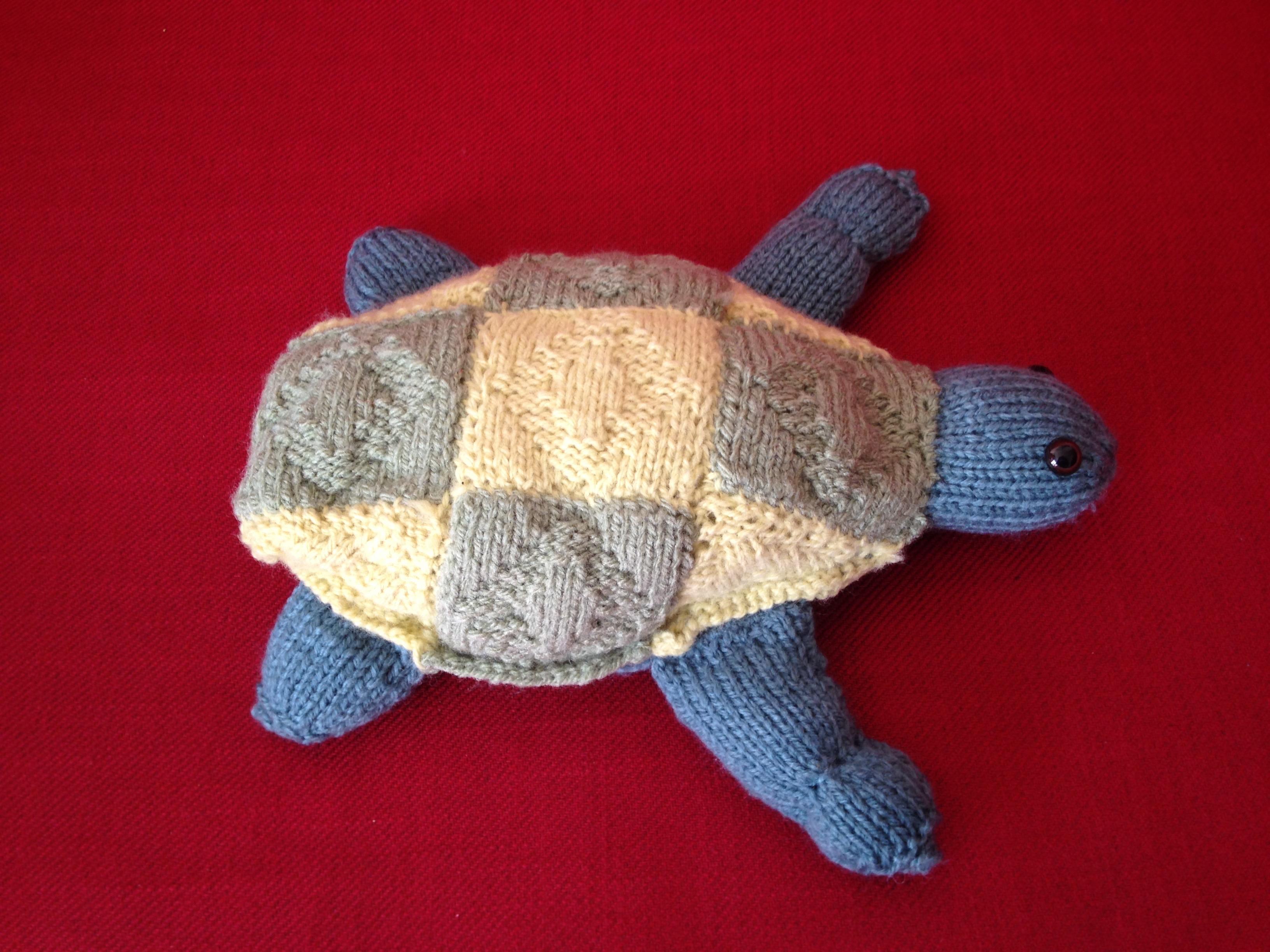 Bertrand, la tortue