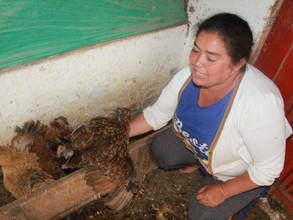 Les femmes productricesde La Tulpa