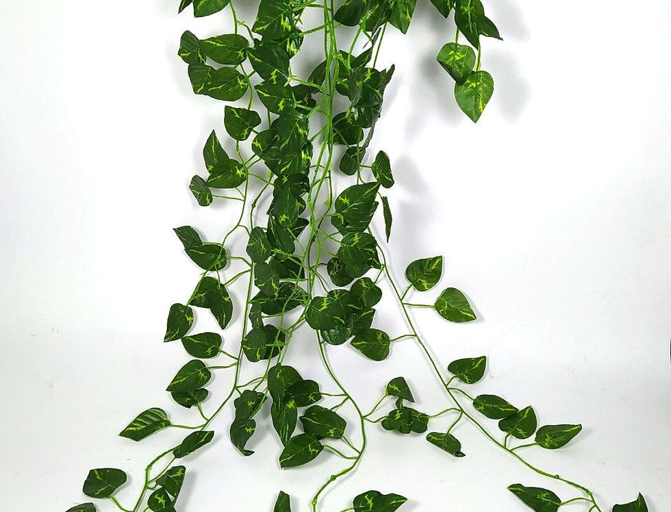 Τεχνητή πρασινάδα κρεμαστή πόθος